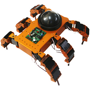 Multi-joint 6-leg Robot#1