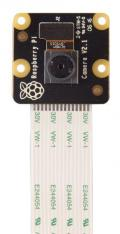 Raspberry Pi PiNoir Camera Module V2