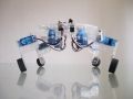 Dagu - Quadbot Spider Kit
