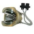 Lampada Proiettore Panasonic ET-LAC100 (Solo Bulbo)