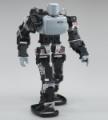 Programming Service - Robot Umanoidi