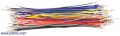 Wires with Pre-crimped Terminals 50-Piece Rainbow Assortment M-F