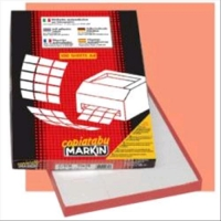 MARKIN 210C509 CONFEZIONE 200 ETICHETTE 210X148 AUTOADESIVE BIAN