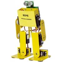 MECCANICA PER ROBOT BIPE