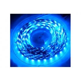 STRIP WEATHERPROOF 150 LED BLU 12V - 5 METRI