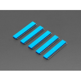 20-pin 0.1 (inches) Female Header - Blue - 5 pack