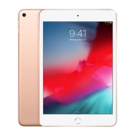 TABLET IPAD MINI5 WIFI 256GB GOLD