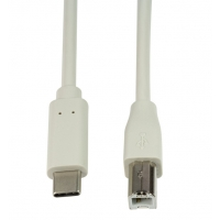 Cavo SuperSpeed USB-C™ Maschio/USB-B Maschio 1m Grigio