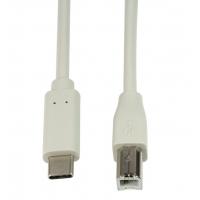 Cavo SuperSpeed USB-C™ Maschio/USB-B Maschio 2m Grigio