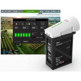 Inspire 1 - TB47 batteria LiPo (22,2V 4500mAh)