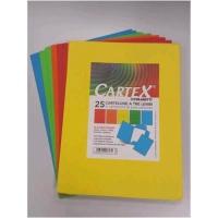 BLASETTI CARTEX CARTELLINE A 3 LEMBI CON STAMPA IN CARTONCINO 18